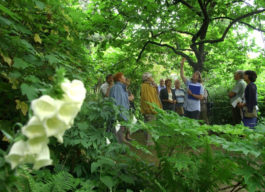 13 photos qui prouvent que grasse n 39 est pas la plus belle for Jardin villa xavier